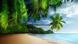 beach_0008_layer-2